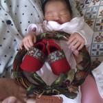 赤ちゃんとリース
