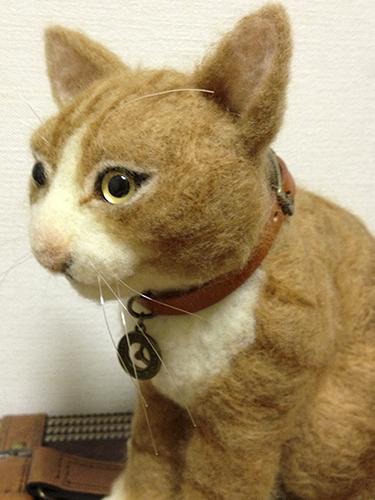 羊毛リアル猫